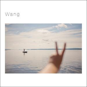 王舟 「Wang LP」