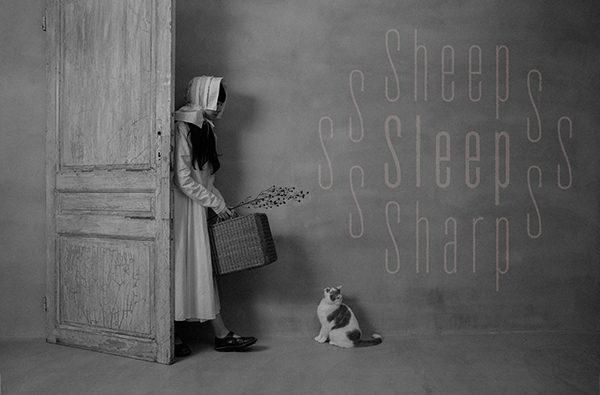 sheep sleep sharp